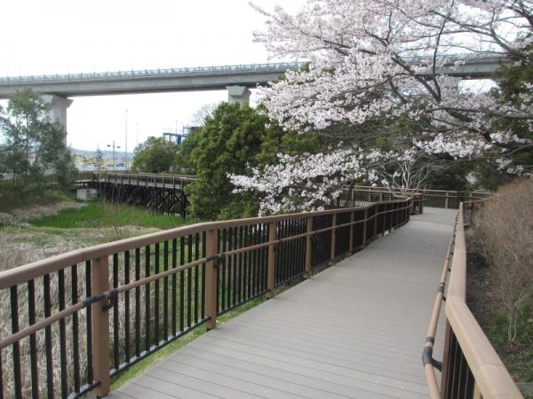 愛知万博菖蒲池(愛知県)