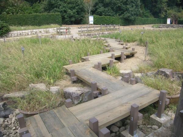 馬見丘陵公園(奈良県)