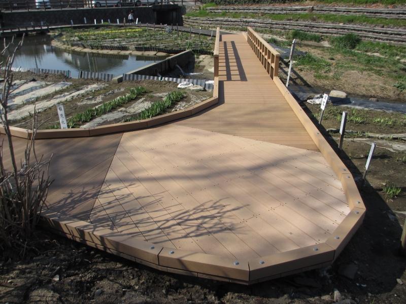 堀川菖蒲園(三重県)