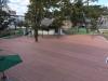 猿沢池(奈良県)