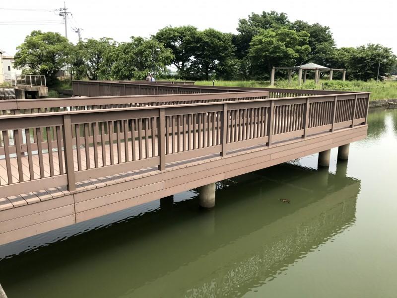 柴山沼(埼玉県)