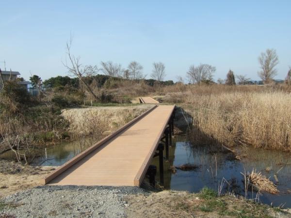 家棟川ビオトープ(滋賀県)