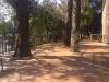 洗足池公園(東京都)