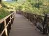 桜淵公園(愛知県)
